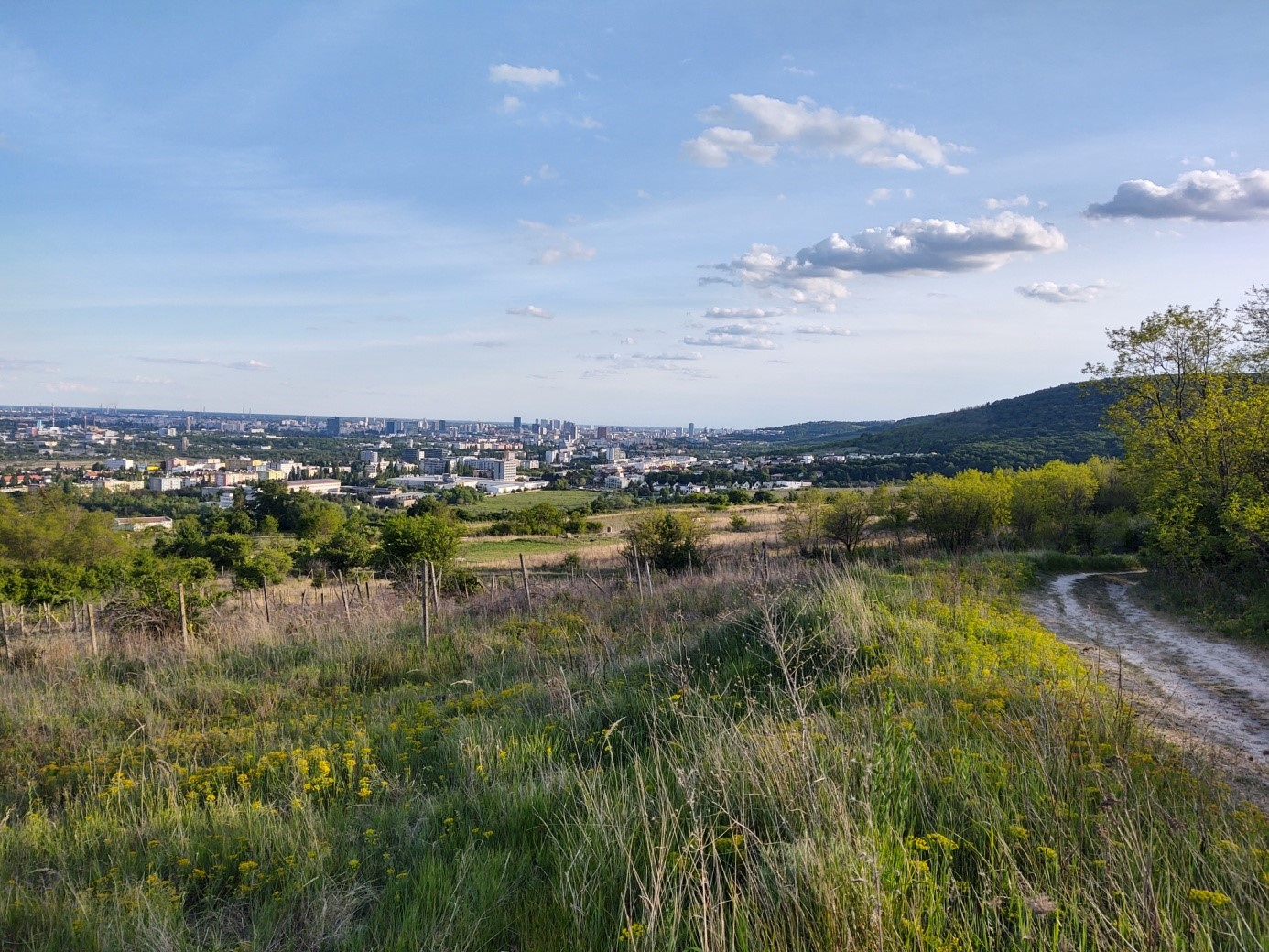 Krasňanský trailrun – trasa podľa Richarda Chrappu